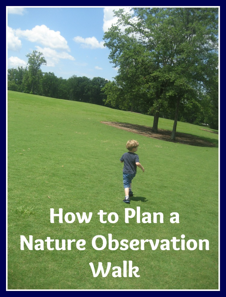 How to Plan a Nature Observation