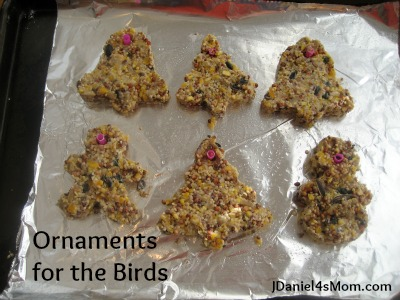 Homemade Bird Ornaments - Read.Explore.Learn.