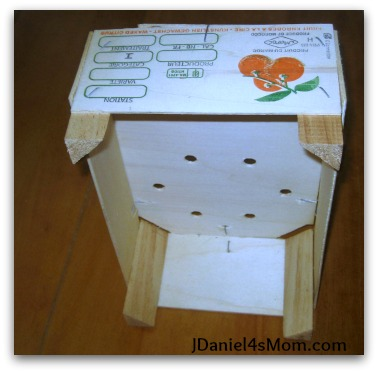 Quest to Trap the Leprechaun in a Homemade Trap