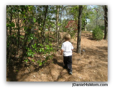 Nature for Kids - Observing Spring