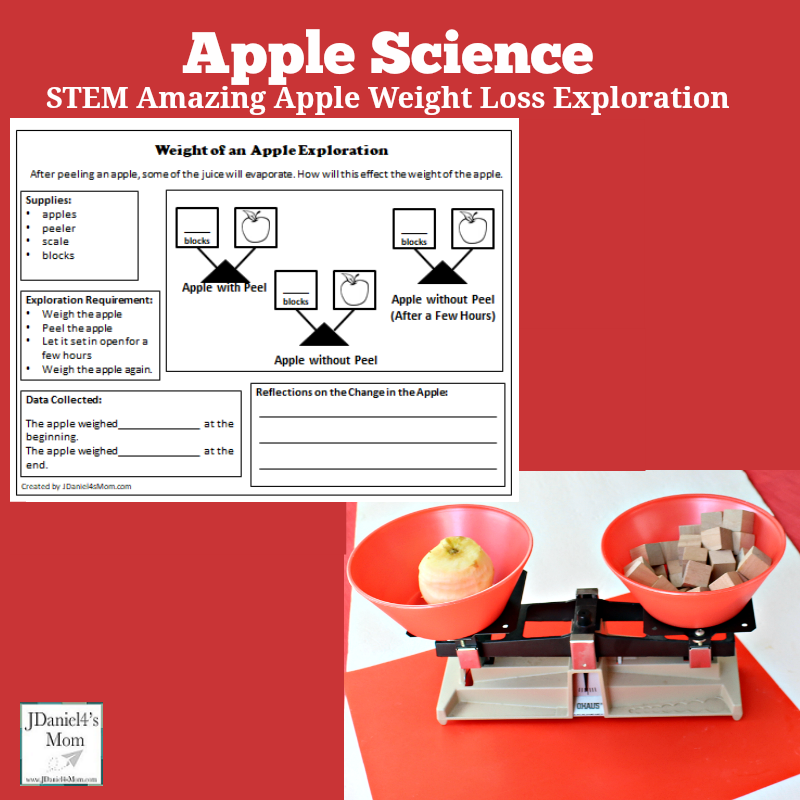 Apple Science STEM Amazing Apple Weigh Loss Exploration