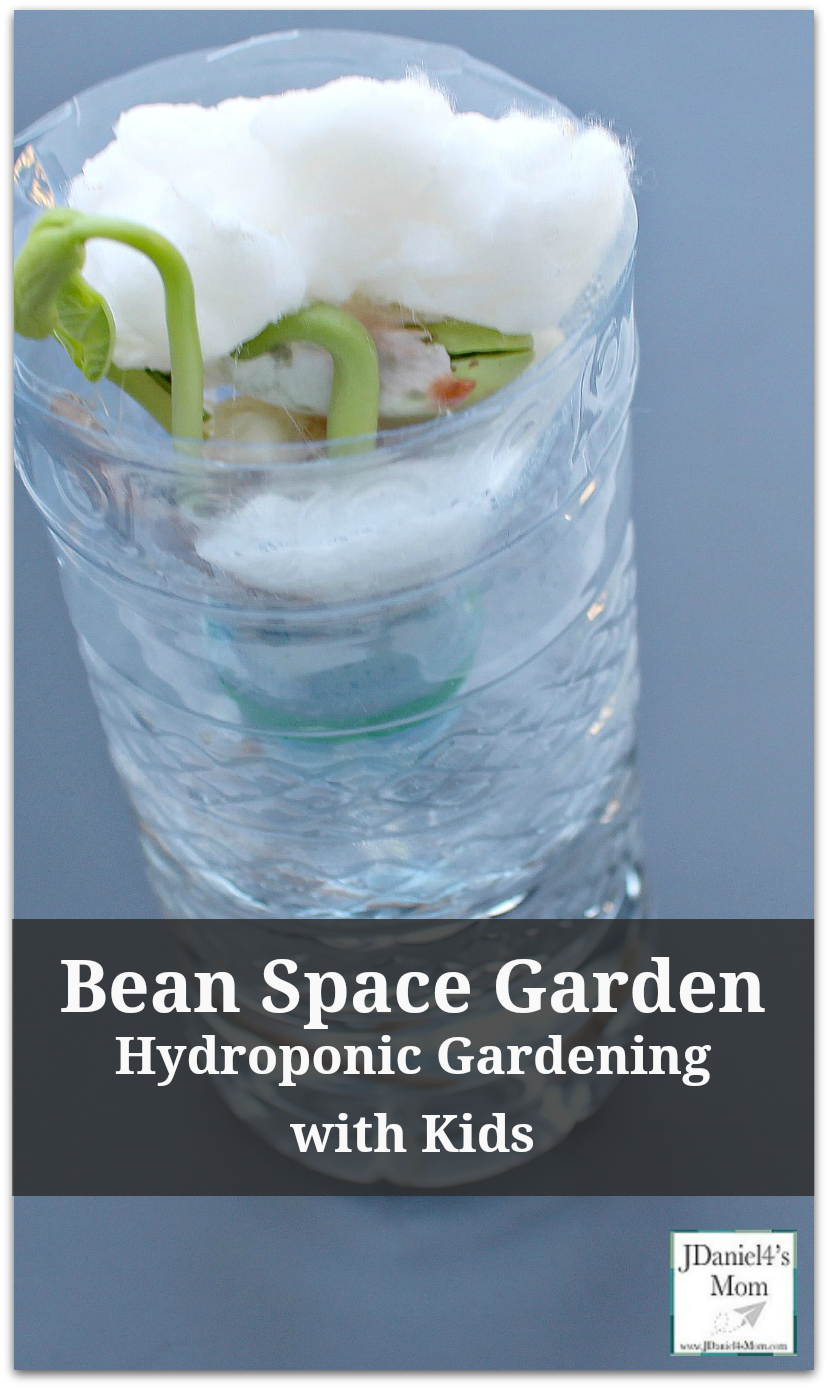 Hydroponic Gardening with Kids - Bean Space Garden : Kids will love watching the bean seed grow without soil and floating in space and growing! This would be fun to do during a gardening or space unit.