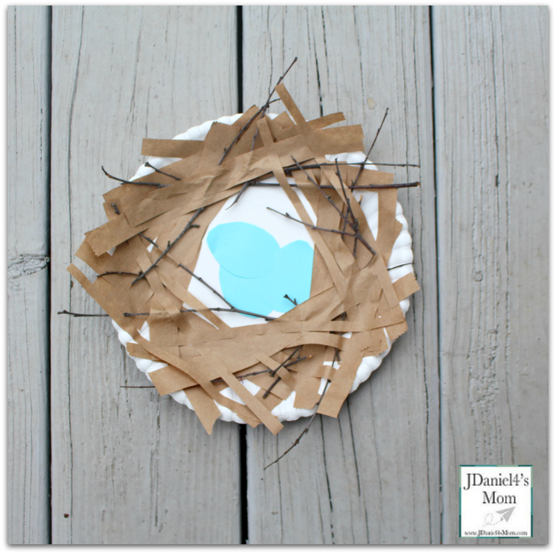 Bird Nest Craft -Picture of the Completed Nest