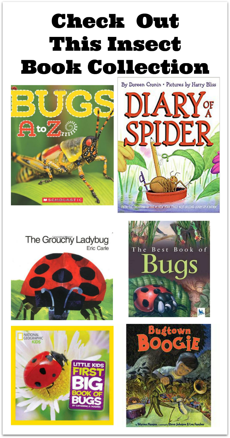 Check Out This Insect Book Collection