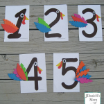 Fun Math Games with Turkey Numbers
