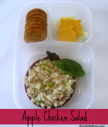Kid's Lunch - Apple Chicken Salad Bento