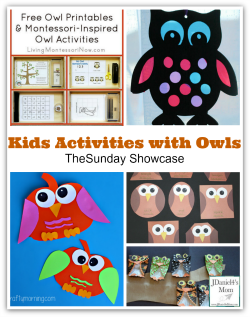 Kids Activities with Owls- The Sunday Showcase