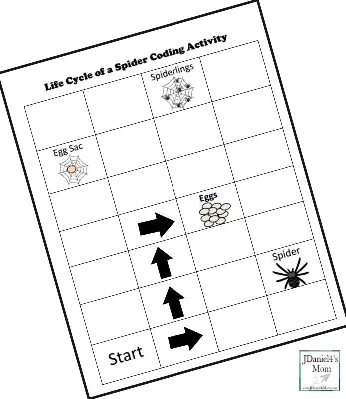 Life Cycle of a Spider Coding Activity- Blank Coding Sheet Step One