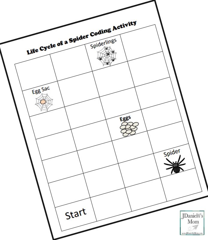 Life Cycle of a Spider Coding Activity- Blank Coding Sheet