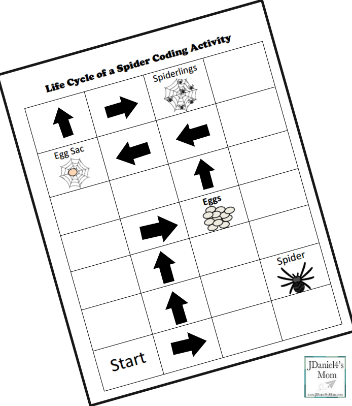 Life Cycle of a Spider Coding Activity- Step Three Picture