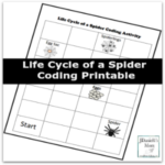 Life Cycle of a Spider Coding Printable Featured