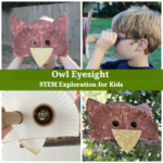 Owl Eyesight - STEM Exploration for Kids