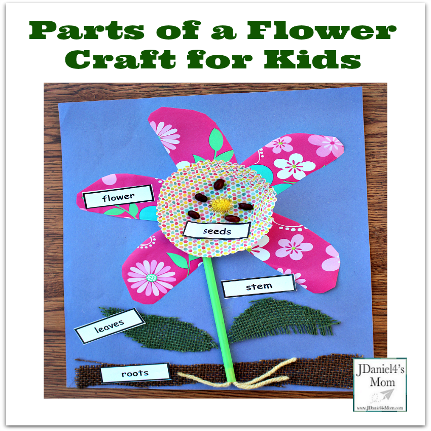Parts of a Flower Craft for Kids - Stop by and get a free set of printable plant part labels.