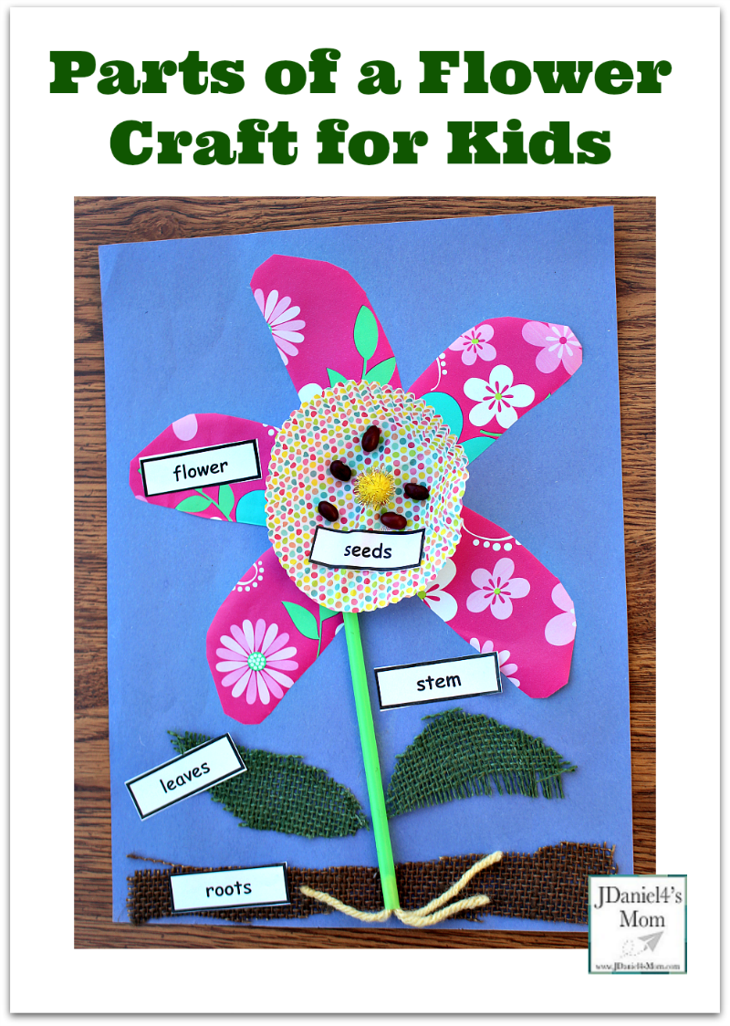 Parts of a Flower Craft for Kids- A free set of printable plant part labels in available on this post.