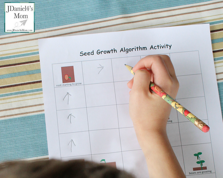 Plant Growth Algorithm Coding Worksheet- Why not tie coding into your study of plants.