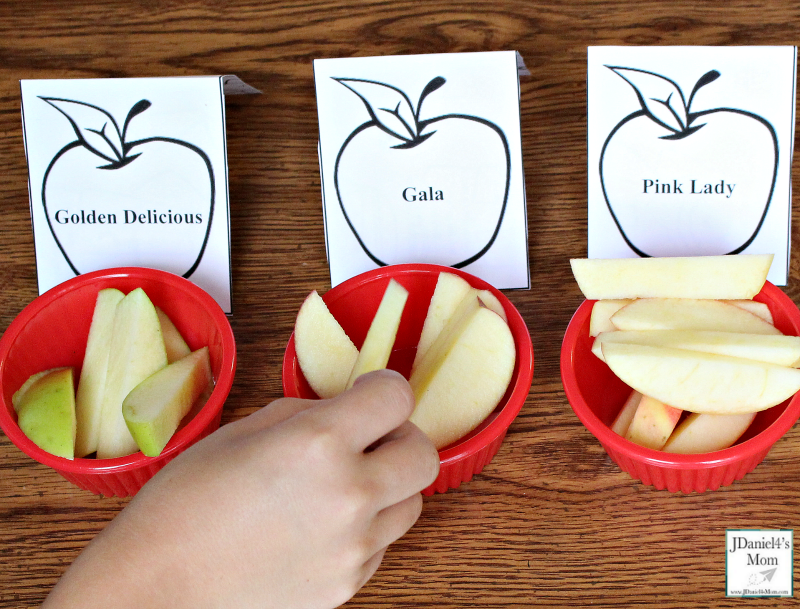 Apple Taste Test with Printables and Editable Place Cards - Taste Testing