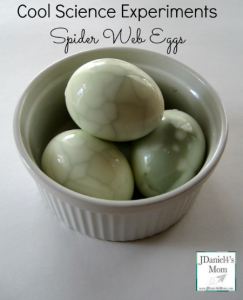 Cool Science Experiments Spider Web Eggs