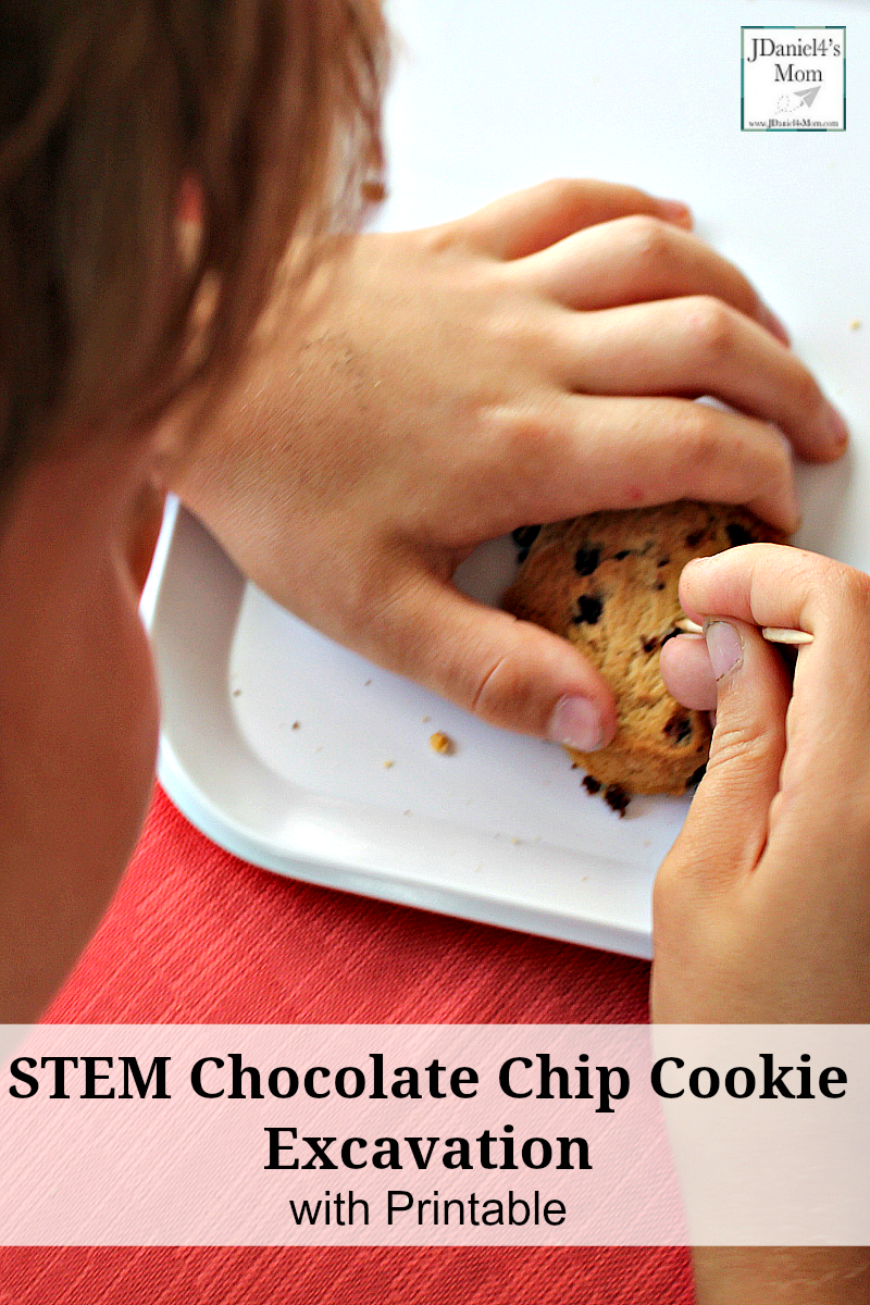 STEM Chocolate Chip Cookie Excavating Activity with Free Recording Printable - This STEM activity would be a wonderful to do during a geology unit, dinosaur study, or just as a fine motor activity with your children at home or students at school.