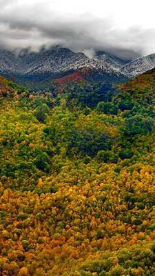 Planning a Getaway to Sevierville TN
