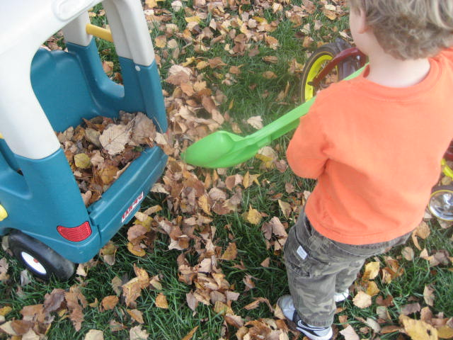 jd4smom_loadingleaves