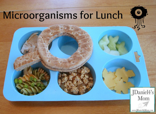 Particularly Loves Microorganisms Lunch for Kids Close Up