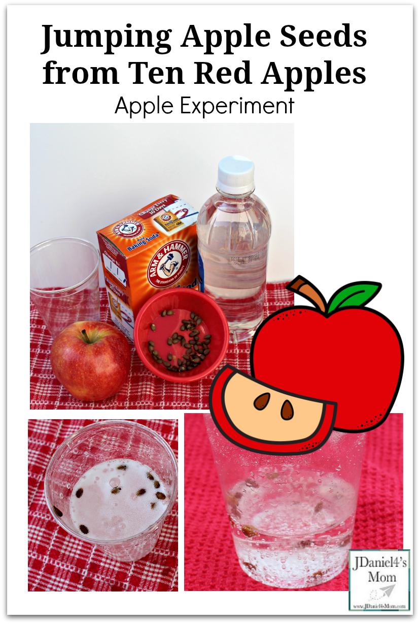 Jumping Apple Seeds from Ten Red Apples Apple Experiment for Kids of All Ages - Kids at home or students at school will love watching the chemical reaction in this STEM experiment.