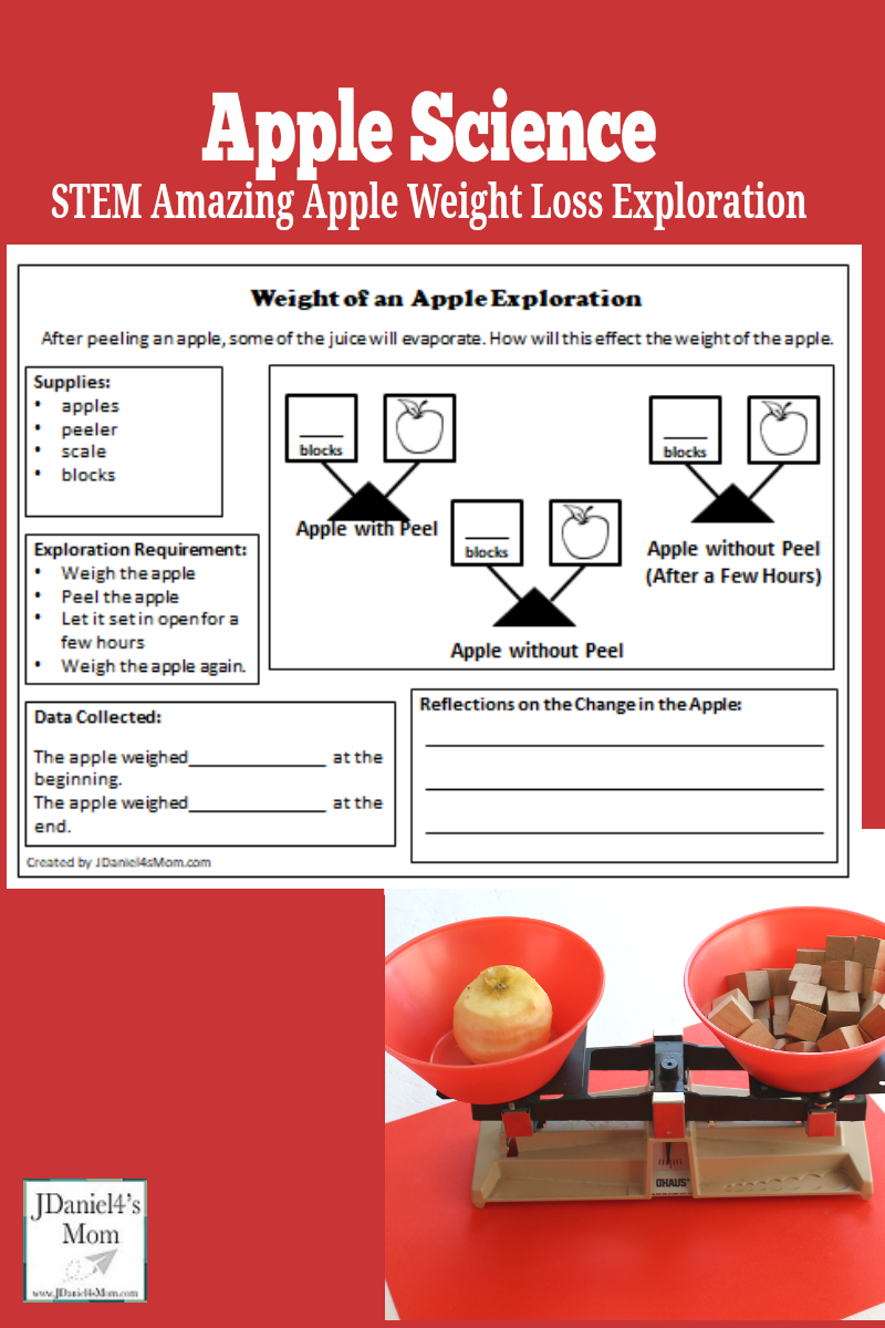 Apple Science- Apple Weight Loss - This apple experiment would fun to do as part of a fall apple unit or a study of Johnny Appleseed. Kids will love using an apple peeler and a scale to find the weigh loss of an apple. There is a free reflection and recording printable available.