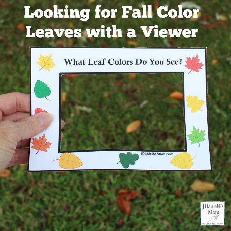 Fall Leaf Colors Viewer Printable