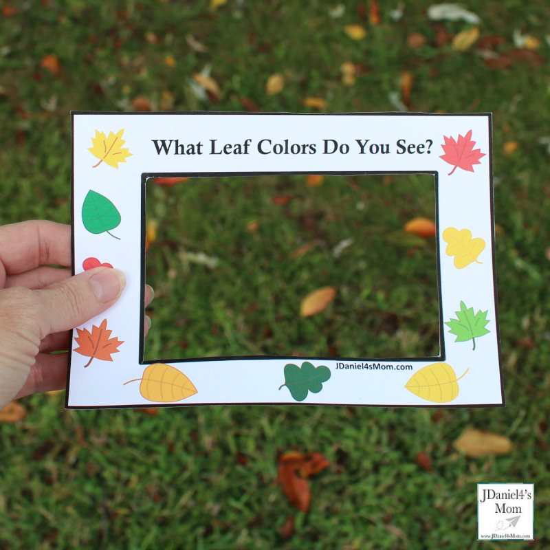 Fall Leaf Colors Viewer - Children at home or students at school can used these viewers to look for fall color leaves on the ground, in bushes or in trees. This is a great way to work on colors.