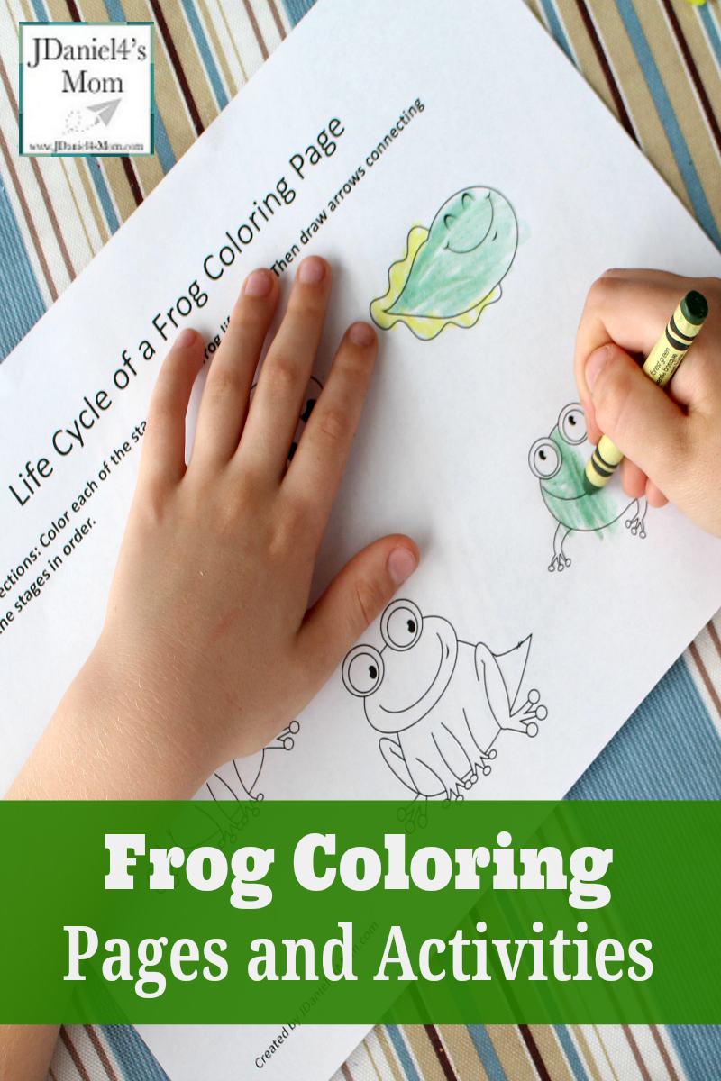 Frog Coloring Pages And Learning Activities
