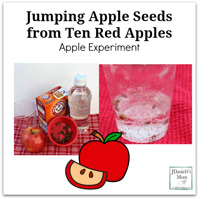 Jumping Apple Seeds from Ten Red Apples Apple Experiment