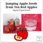 Jumping Apple Seeds from Ten Red Apples Apple Experiment for Kids of All Ages