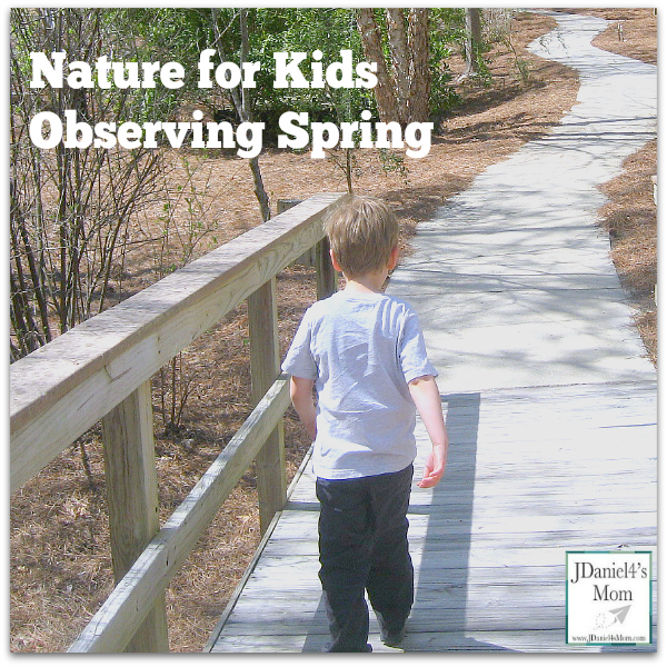 Nature for Kids Observing Spring with Your Senses