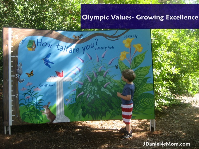 Olympic Values- Excellence