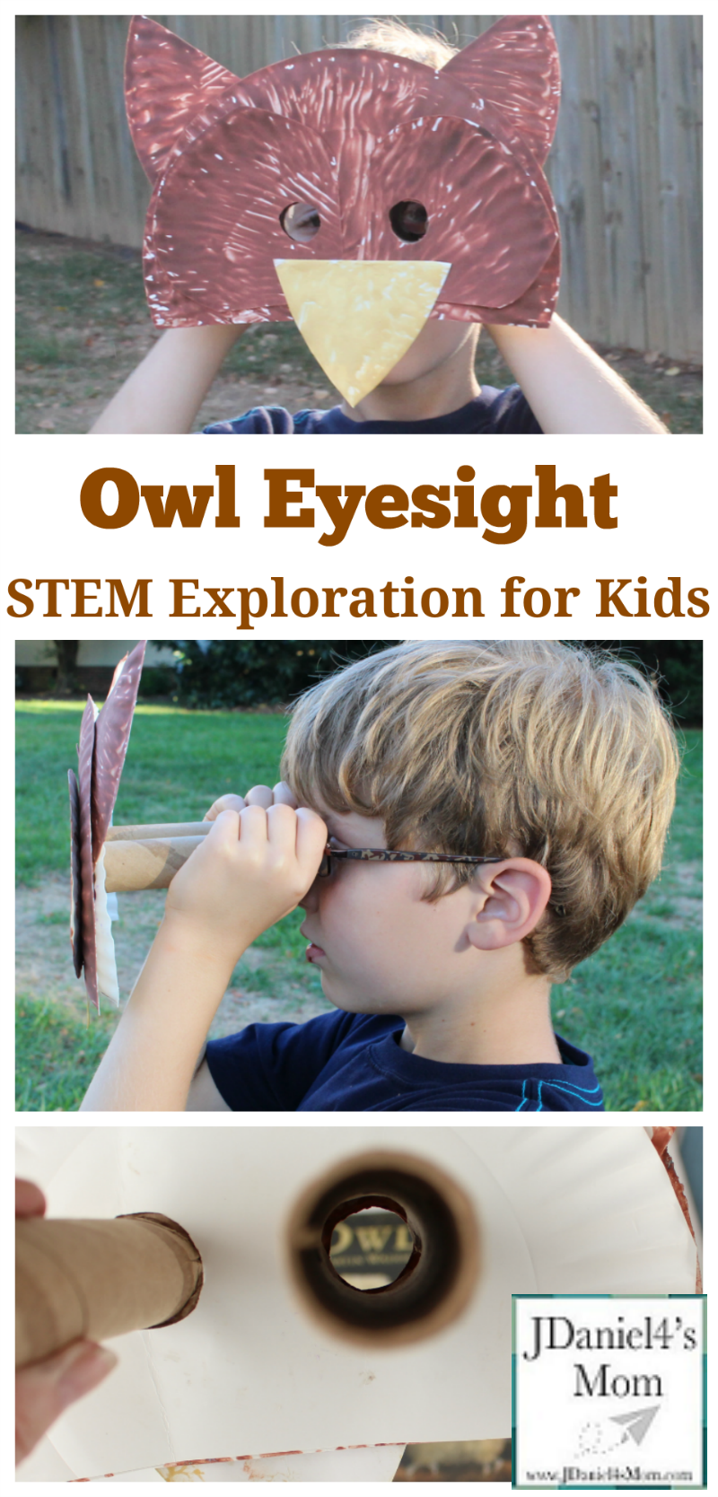 Owl Eyesight Stem Exploration For Kids