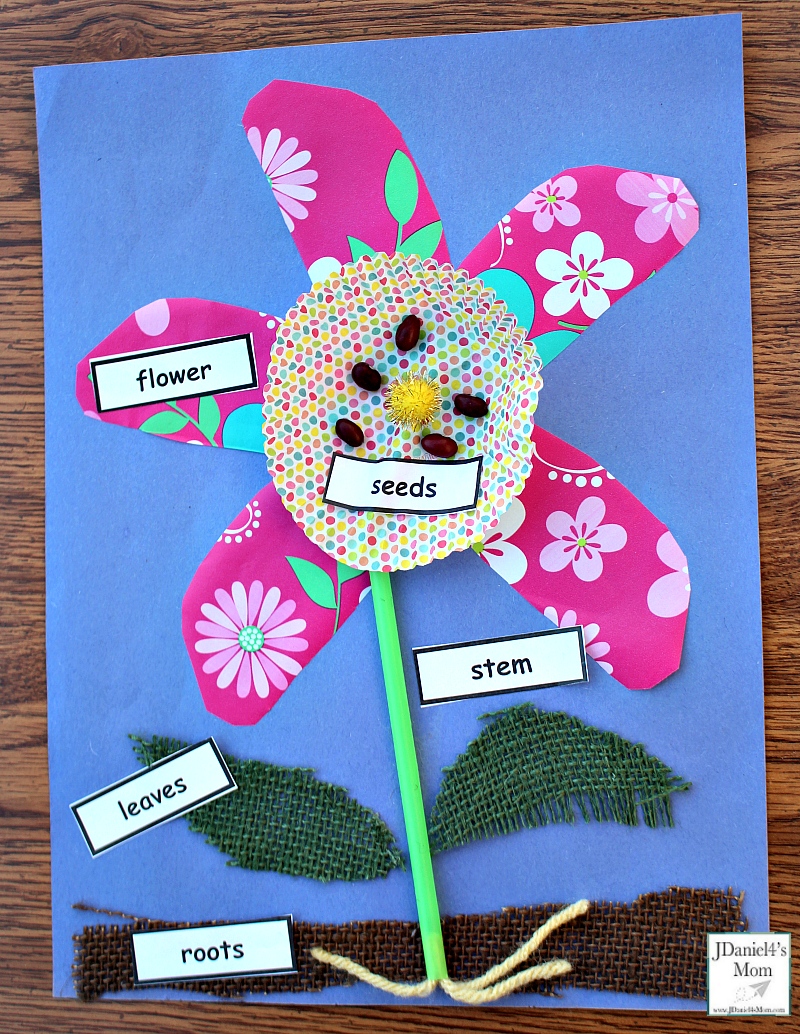 Parts of a Plant Craft for Kids
