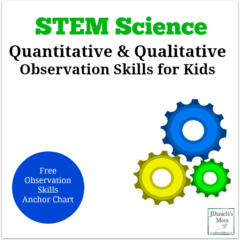 Quantitative and Qualitative Observation Skills for Kids