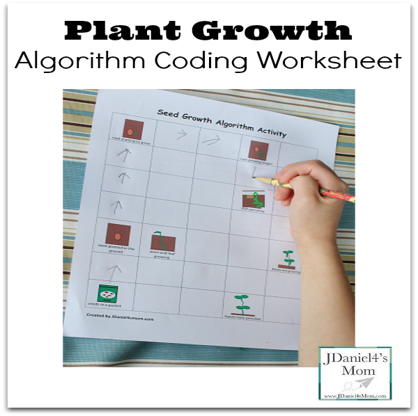 Plant Growth Algorithm Coding Worksheet