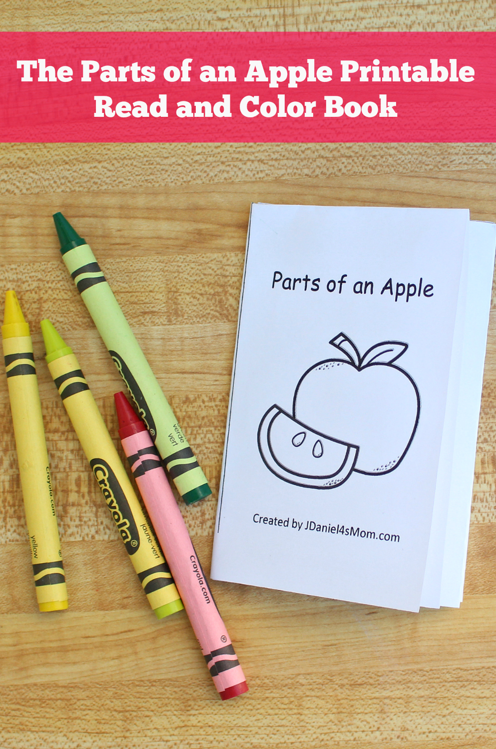 The Parts of an Apple Printable Read and Color Book