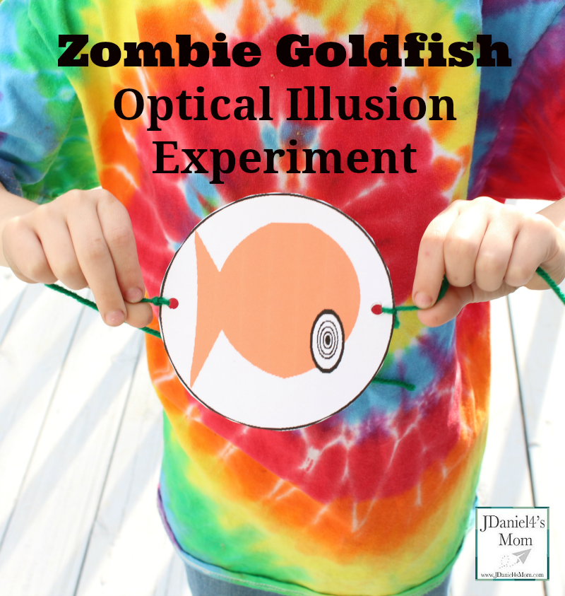 Zombie Goldfish Optical Illusion Experiment