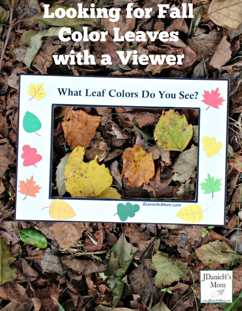 Fall Leaf Colors Viewer - Children at home or students at school can used these viewers to look for fall color leaves on the ground, in bushes or in trees. This is a great way to work on colors and explore leaves. You can even take leaves inside to explore them in a science center.
