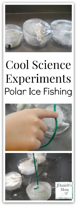 Fun Science- Polar Ice Fishing