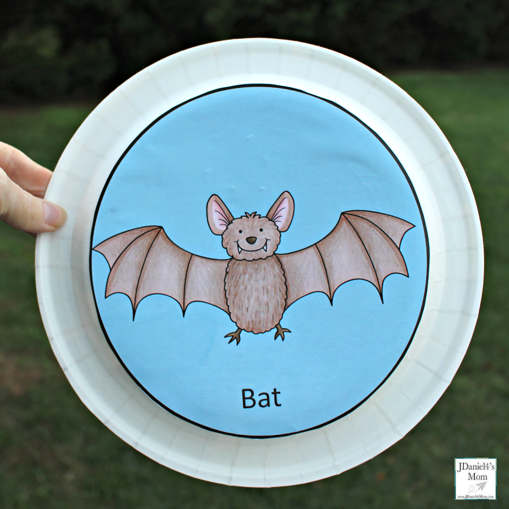 Echolocation Activity for Kids- This is a fun sensory and science activity. Here is the bat plate for the activity.