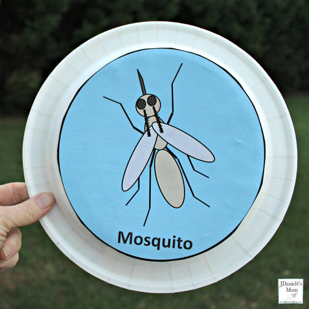 Echolocation Activity for Kids- This is a fun sensory and science activity. Here is the mosquito shaker plate for the activity.