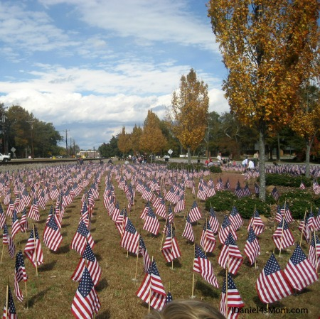 I Am Grateful for Family {21 Days of Gratitude Challenge} - Field of Flags