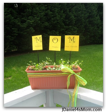 {Dig Into Gardening} M.O.M. Herb Container Garden and Link Up