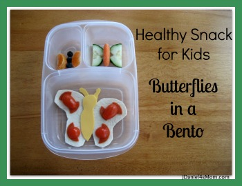 Healthy Snack -Butterfly Bento