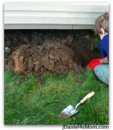Gardens for Kids- Spider Web Trellis