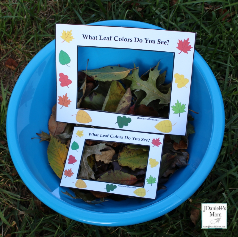 Fall Leaf Colors Viewer - Children at home or students at school can used these viewers to look for fall color leaves on the ground, in bushes or in trees. This is a great way to work on colors and explore leaves. You can even take leaves inside.