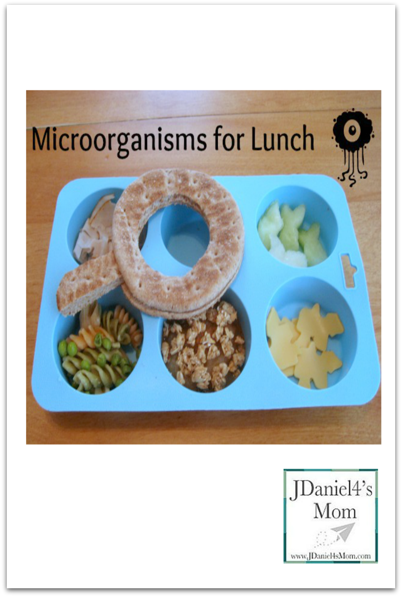 Particularly Loves Microorganisms Lunch for Kids